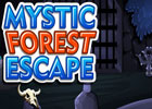 Mystic Forest Escape Walkthrough