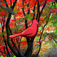 red-autumn-forest-escape