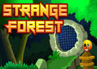 Strange Forest Walkthrough