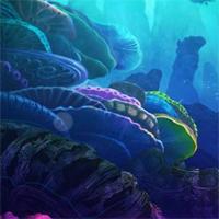 underwater-lionfish-…