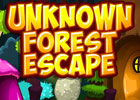 Unknown Forest Escape Walkthrough