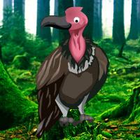 vulture-forest-escape