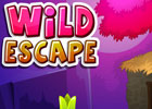 Wild Escape Walkthrough