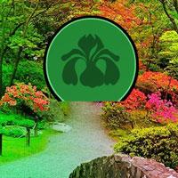 wonder-blossom-garden-escape