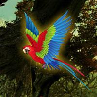 wow-macaw-fantasy-escape