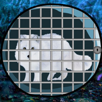 wowescape-save-the-arctic-fox